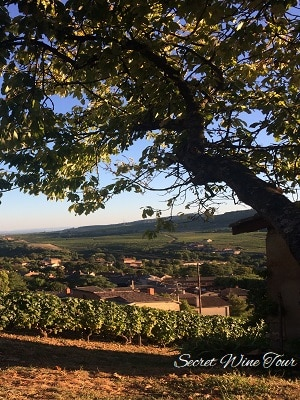 Beautiful Beaujolais and Burgundy landscapes