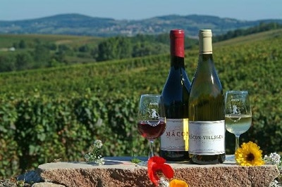 maconnais secret wine tour france bourgogne