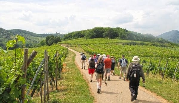 burgundy beaujolais secret wine tour hiking