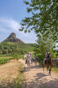 Horseback riding and wine tasting in South Burgundy