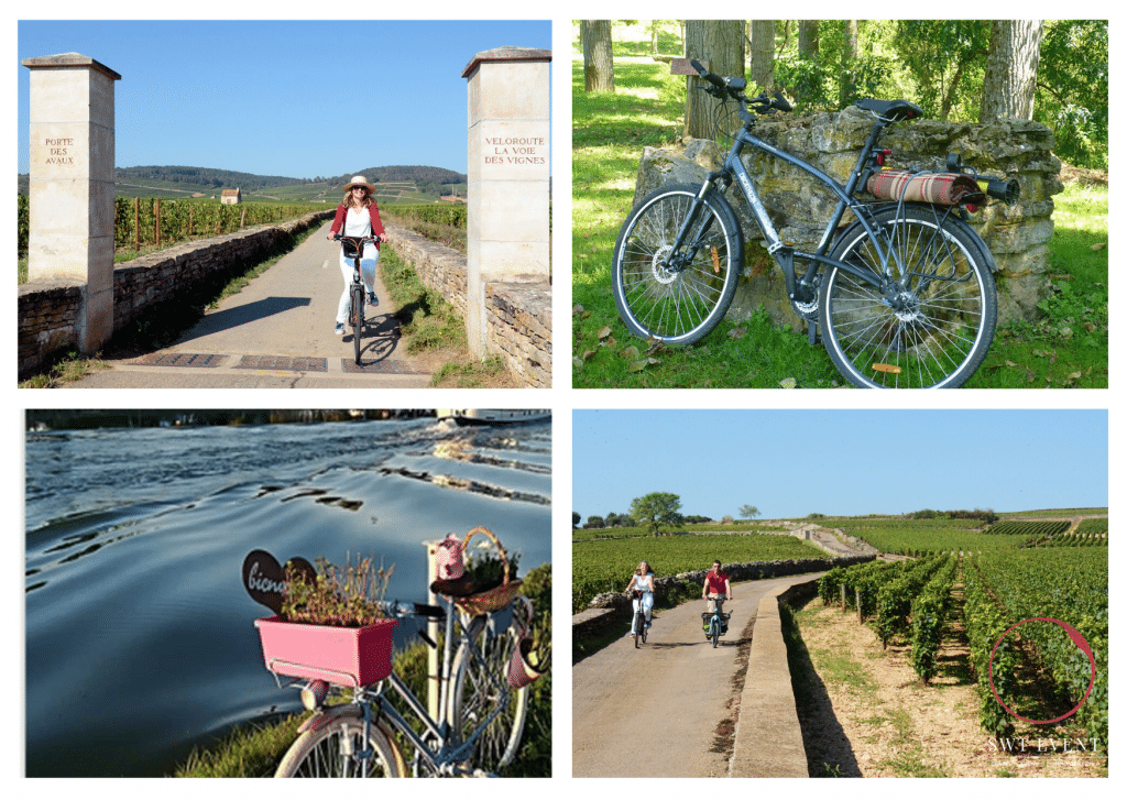cycling tour and wine tasting in burgundy france