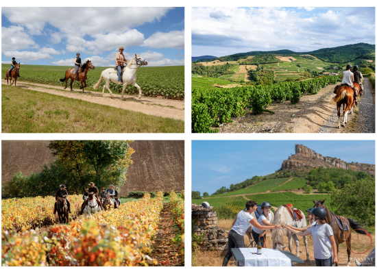 Horse back riding in Burgundy Beaune